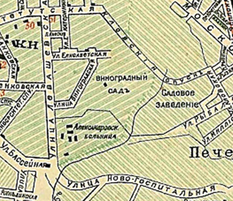 Виноградний сад на плані міста Києва 1900 року