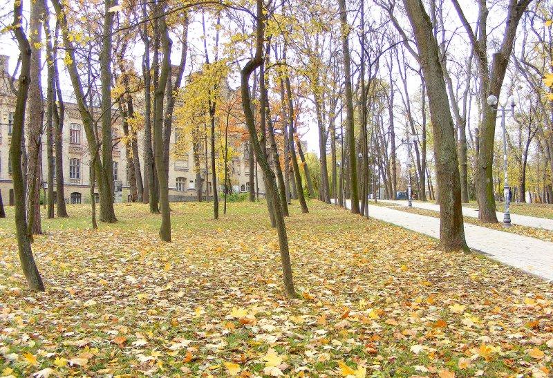Осінь в парку КПІ