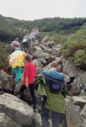 Група йде в гори